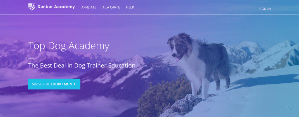 Best Dog Training Courses - Dr Dunbar