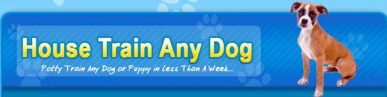 Best Dog Training Courses - House Train Any Dog