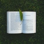 Best Mindfulness Books - The 11 Choices You Should Read