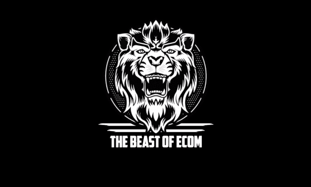 Ecom Beast 2.0 Review – Will This Ecommerce Course Set You Up For Success?