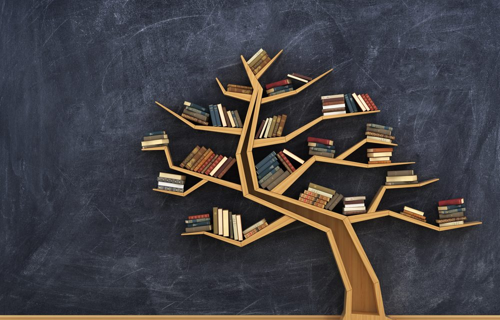 Best Psychology Books - 12 Top Choices
