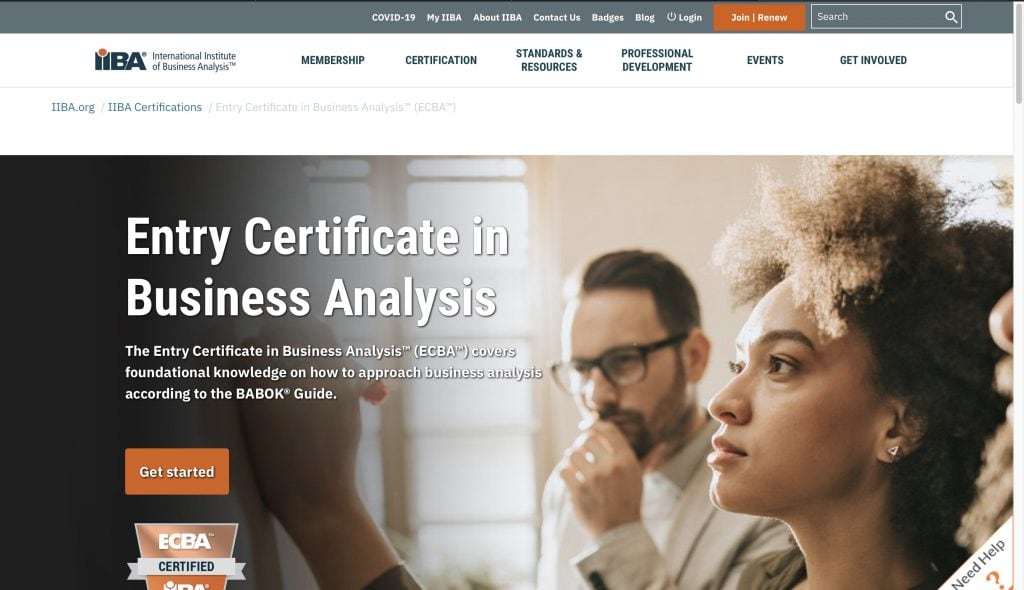 International Institute of Business Analysis—Entry Certificate in Business Analysis