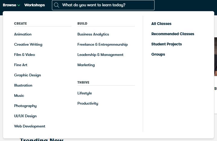 Skillshare Topics