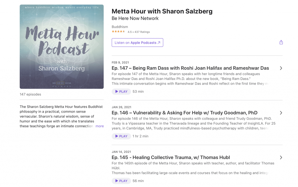 Metta Hour Podcast