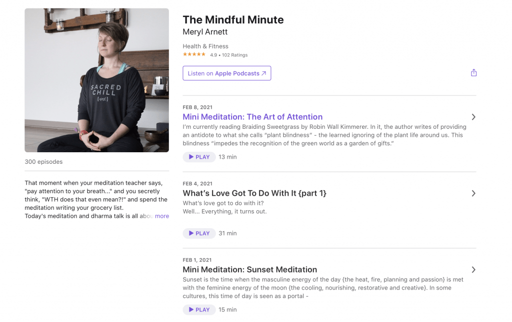 The Mindful Minute