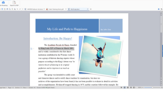 WPS Office Images in Writer